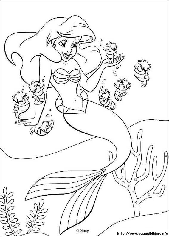 David Koch Ausmalbild Meerjungfrau
