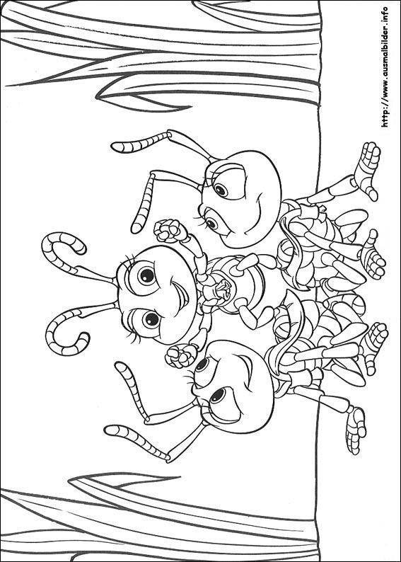 Das große Krabbeln malvorlagen