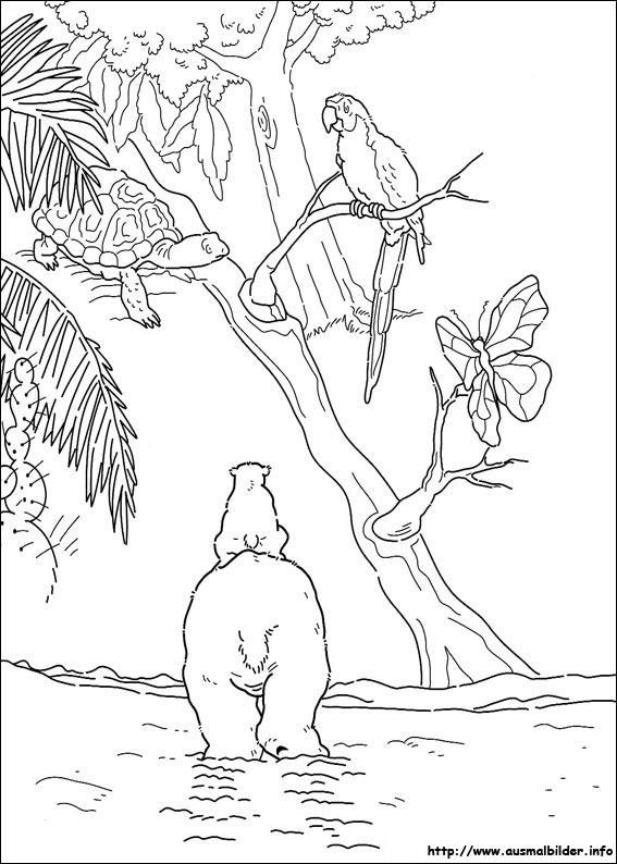 Ausmalbilder von Der kleine Eisbär zum Drucken