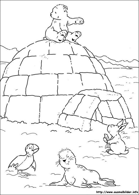 Der kleine Eisbär malvorlagen