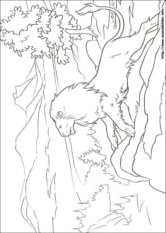 The Lion The Witch And The Wardrobe Free Coloring Pages