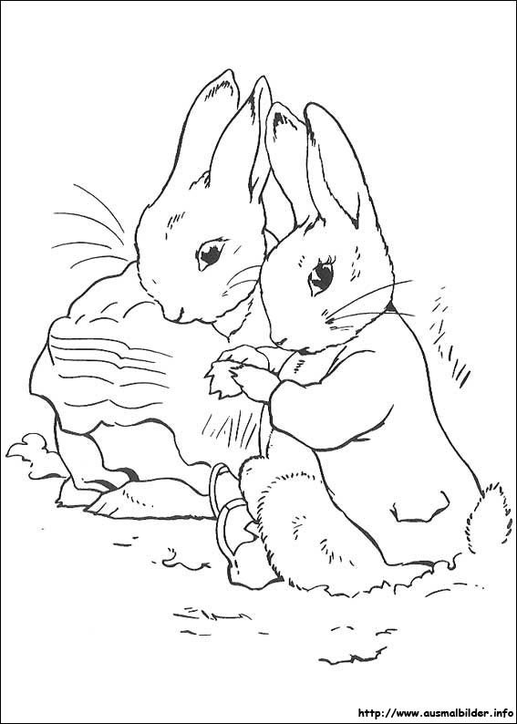 peter rabbit malvorlagen